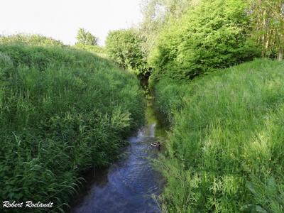 Sint-Truiden Haspengouwse Gordel 2016 - 16-05-2016 - 27
