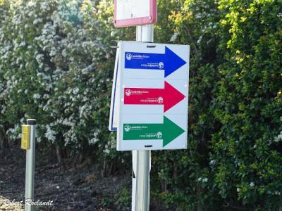 Sint-Truiden Haspengouwse Gordel 2016 - 16-05-2016 - 38
