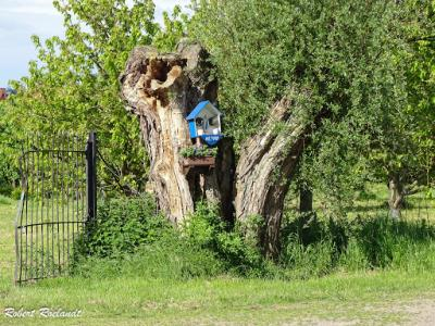 Sint-Truiden Haspengouwse Gordel 2016 - 16-05-2016 - 71